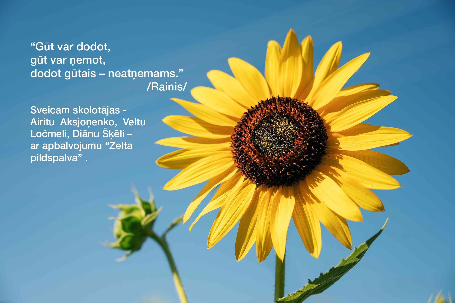 Sveiciena teksts uz puķēm